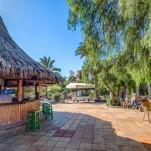 SBH Fuerteventura Playa 55