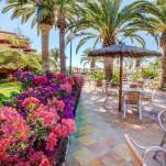 SBH Fuerteventura Playa 31